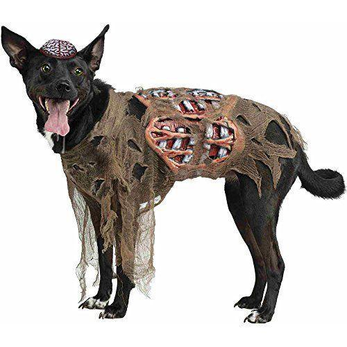 "<p><strong>Fun World Costumes</strong></p><p>amazon.com</p><p><strong>17.99</strong></p><p><a href=""https://www.amazon.com/dp/B00N4616EQ?tag=syn-yahoo-20&ascsubtag=%5Bartid%7C10050.g.34075855%5Bsrc%7Cyahoo-us"" rel=""nofollow noopener"" target=""_blank"" data-ylk=""slk:Shop Now"" class=""link rapid-noclick-resp"">Shop Now</a></p><p>Pet costumes are almost always adorable but this one is a little disturbing. It comes with three pieces, including the tattered gauze shirt, guts belt and brain cap.</p>"