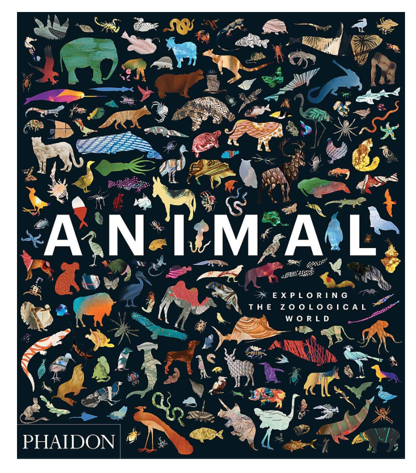 Animal: Exploring the Zoological World Coffee Table Book (Photo via Amazon)