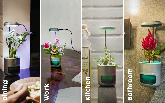 PICO smart planters look good in just about every room in the house.