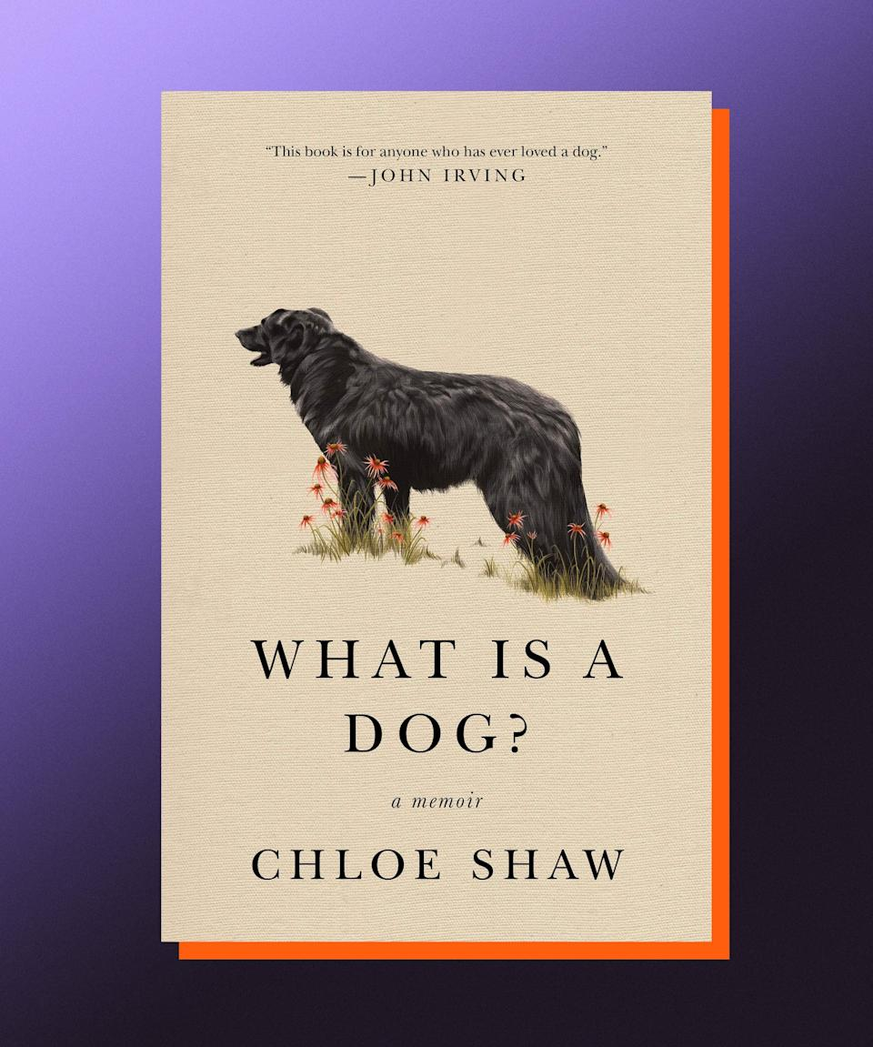 """<strong><em>What Is a Dog?</em>, Chloe Shaw (</strong><a href=""""https://bookshop.org/books/what-is-a-dog-a-memoir/9781250210746"""" rel=""""nofollow noopener"""" target=""""_blank"""" data-ylk=""""slk:available July 13"""" class=""""link rapid-noclick-resp""""><strong>available July 13</strong></a><strong>)</strong><br><br>In <em>What Is a Dog?</em>, Chloe Shaw tells the story of her life — laced with loss, loneliness, and love — through the lens of her dogs' lives. First, there is Easy; then, Agatha I, quickly followed by Agatha II; there is Safari and there is Otter; most importantly, there is Booker — the gentle giant of a dog that """"shepherded"""" Shaw into her adult life, into marriage and motherhood. At every step along the way, Shaw relates more closely to her dogs than she does to other people — than she does even to herself. The quiet triumph of this deeply felt, lyrical memoir is Shaw's willingness to confront those things that scare her about being a human — the teenage boys who showed how easily and carelessly they could take control of her body; the fear that she won't know what to do in case of an emergency — and break through to the other side, a place where she can find her inner strength, her toughness. And on that other side lies the family and home she has built, one that she is at the center of — always with a dog or two close by."""