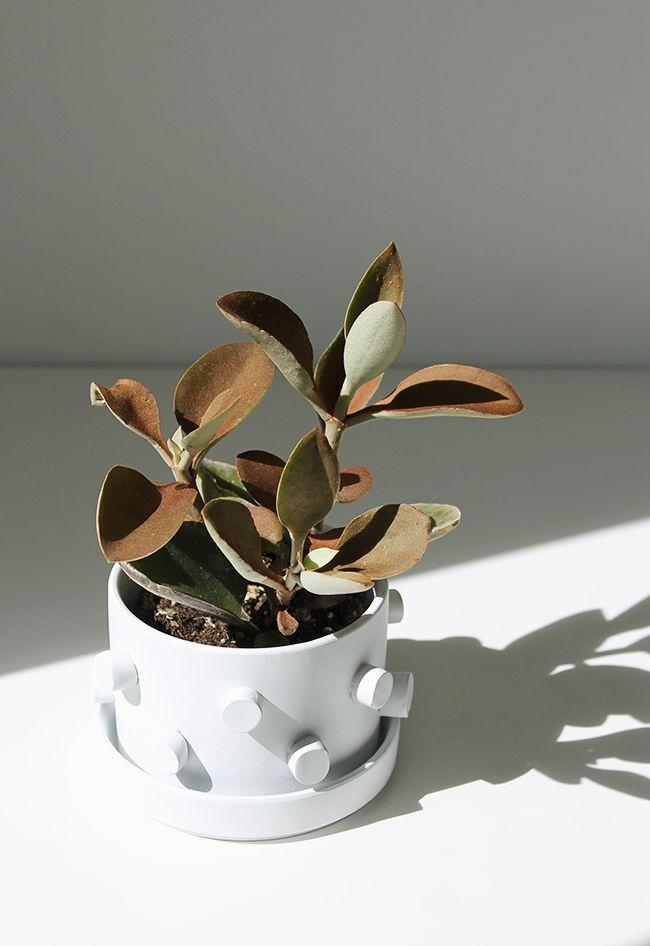 """<p>With a bit of crafting clay and some paint, you can turn your standard terracotta pot into a planter worthy of a center spot in his office. </p><p><a href=""""https://almostmakesperfect.com/2016/03/23/diy-3d-planter/"""" rel=""""nofollow noopener"""" target=""""_blank"""" data-ylk=""""slk:Get the tutorial."""" class=""""link rapid-noclick-resp"""">Get the tutorial.</a></p><p><a class=""""link rapid-noclick-resp"""" href=""""https://www.amazon.com/CiaraQ-Polymer-Conformed-Non-Toxic-Beginners/dp/B089Y7GB97/?tag=syn-yahoo-20&ascsubtag=%5Bartid%7C10072.g.27603456%5Bsrc%7Cyahoo-us"""" rel=""""nofollow noopener"""" target=""""_blank"""" data-ylk=""""slk:SHOP CLAY"""">SHOP CLAY</a></p>"""