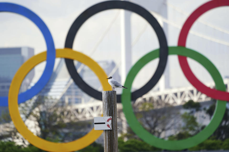 A bird rests with a backdrop of the Olympic rings floating in the water in the Odaiba section Thursday, April 8, 2021, in Tokyo. Two top officials of Japan's ruling LDP party on Thursday, April 15, 2021, said radical changes could be coming to the Tokyo Olympics. One went as far to suggest they still could be canceled, and the other that even if they proceed, it might be without any fans. (AP Photo/Eugene Hoshiko)