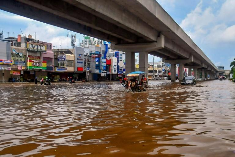 A horse pulls a carriage through a flooded road in Jakarta