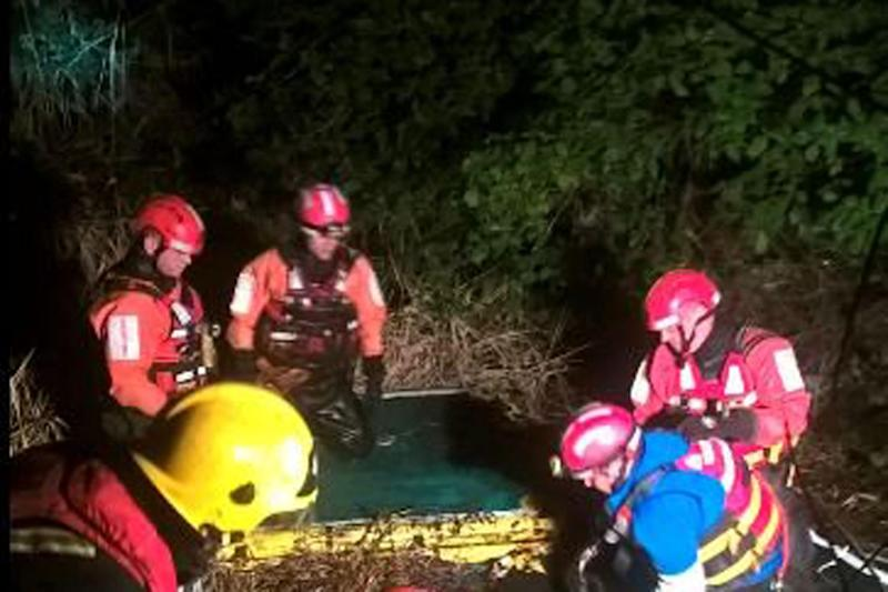 Rescue mission: Firefighters pulled Apple from a swamp in Beckton: LFB