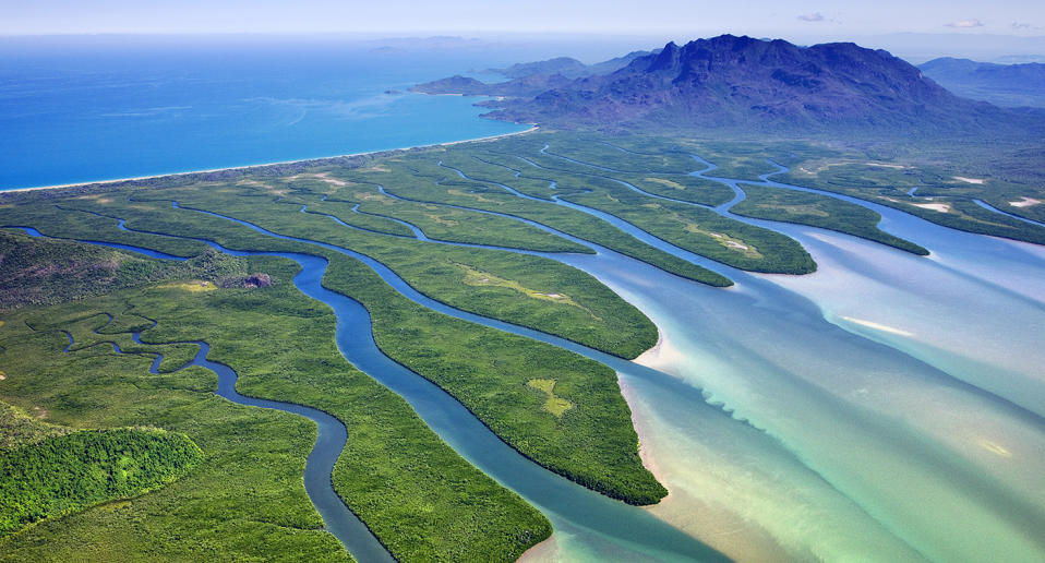 The man was fishing in a creek on Hinchinbrook Island when he disappeared. Source: Getty/File