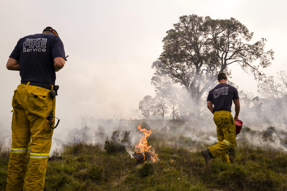 Tasmania Fire Service conduct back burns and create fire breaks in preparation for the unfavourable weather conditions earlier this month in Miena. Source: Getty Images (file pic)