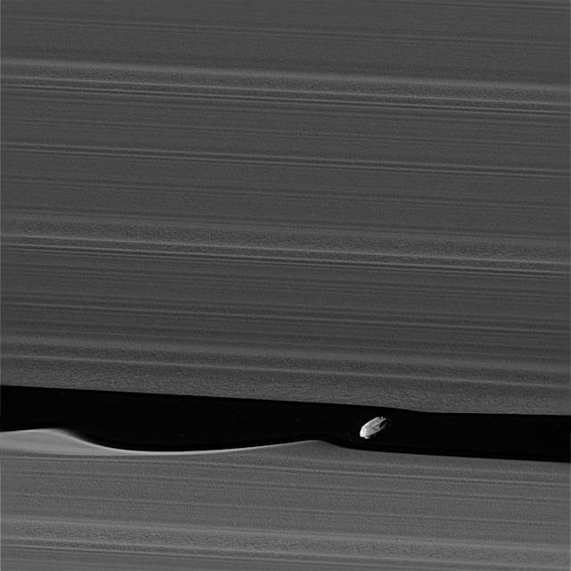 <p>The wavemaker moon, Daphnis, is featured in this view taken as NASA's Cassini spacecraft made one of its ring-grazing passes over the outer edges of Saturn's rings on Jan. 16, 2017. Daphnis (5 miles or 8 kilometers across) orbits within the 42-kilometer (26-mile) wide Keeler Gap. The little moon's gravity raises waves in the edges of the gap in both the horizontal and vertical directions. (Photo: NASA/JPL-Caltech/Space Science Institute) </p>