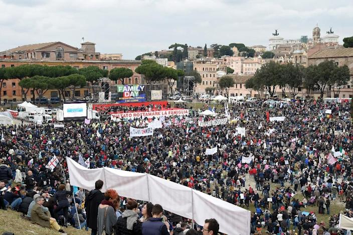 Thousands of demonstrators take part in the Family Day rally at the Circus Maximus arena in Rome, on January 30, 2016 (AFP Photo/Andreas Solaro)
