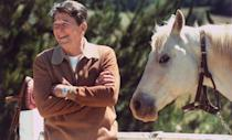"<p>Ronald Reagan received a white horse from the president of Mexico, José López Portillo. The horse's name was Alamain, and was reportedly from <a href=""https://www.aol.com/article/news/2017/01/26/what-happens-when-a-gift-is-given-to-the-united-states-president/21663421/#slide=4424802#fullscreen"" data-ylk=""slk:Portillo's private stable"" class=""link rapid-noclick-resp"">Portillo's private stable</a>. </p>"