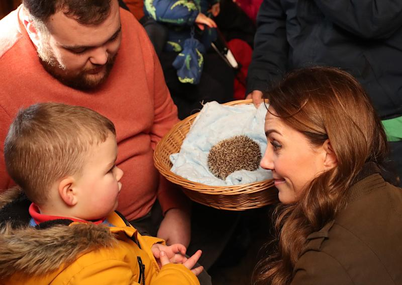 Britain's Catherine, Duchess of Cambridge reacts as she and a child look at a hedgehog during her visit to Ark Open Farm near Belfast on February 12, 2020, as part of her tour of the UK to promote her landmark survey on the early years, '5 Big Questions on the Under-Fives'. (Photo by Liam McBurney / POOL / AFP) (Photo by LIAM MCBURNEY/POOL/AFP via Getty Images)