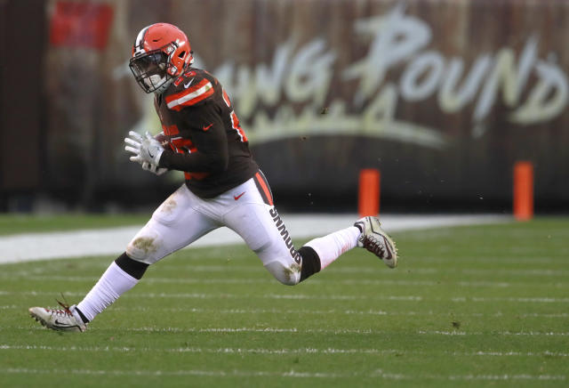 Duke Johnson still belongs in your PPR plans. (Jeff Haynes/AP Images for Panini)