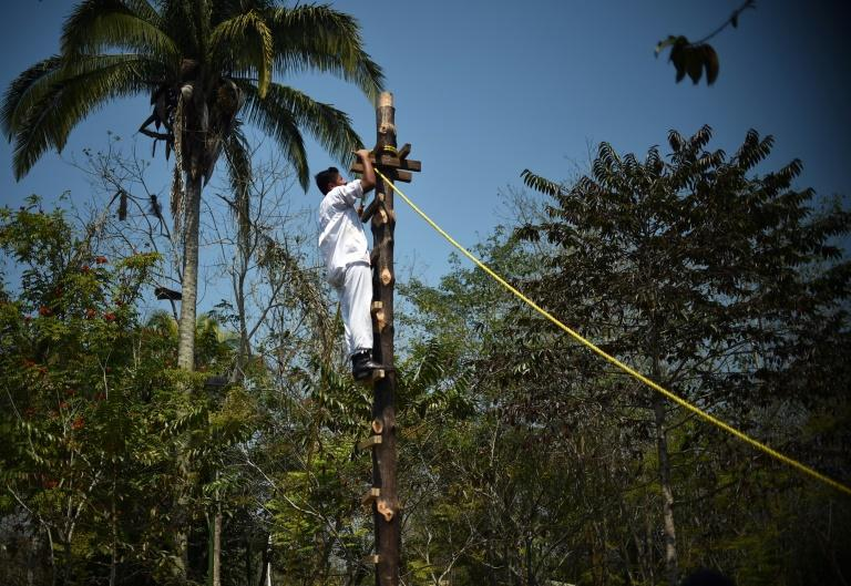 A young Totonac native climbs a pole during a training session at Papantla Indigenous Arts Center