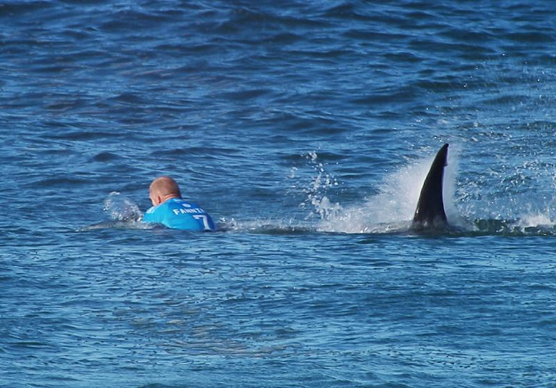 Images quickly went viral of the shark attack in Jeffreys Bay, South Africa (AFP Photo/)