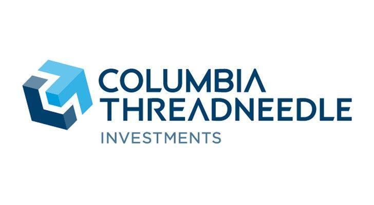 Sector ETFs to Own -- Consumer Discretionary: Columbia Emerging Markets Consumer ETF (ECON)