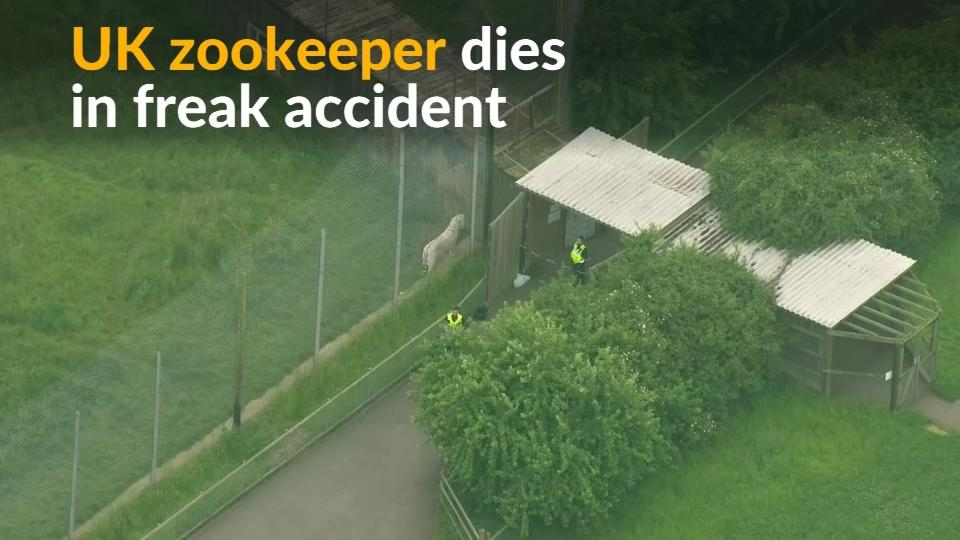 A female zookeeper died after a tiger entered an enclosure in Hamerton Park Zoo in the English Midlands on Monday.