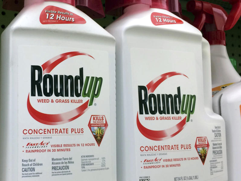 FILE - This Jan. 26, 2017 file photo shows containers of Roundup, a weed killer made by Monsanto, on a shelf at a hardware store in Los Angeles. Jurors who found that agribusiness giant Monsanto's Roundup weed killer contributed to a school groundskeeper's cancer are urging a San Francisco judge not to throw out the bulk of their $289 million award in his favor, a newspaper reported Monday, Oct. 15. (AP Photo/Reed Saxon, File)