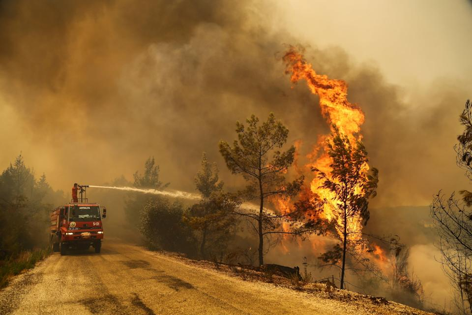 A firefighter extinguishes a forest fire near the town of Manavgat (REUTERS)