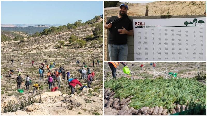 The tree-planting campaign in a Tunisian forest devastated by wildfires
