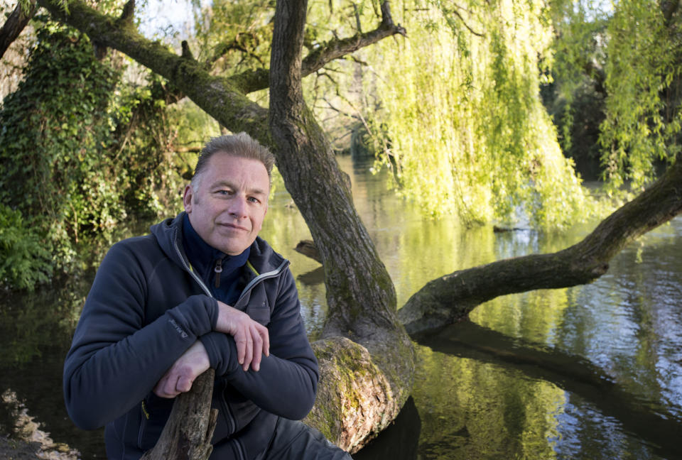 Chris Packham sitting on his tree trunk seat on the banks of the River Itchen. (BBC/Atypical Media Ltd/Tim Smith)
