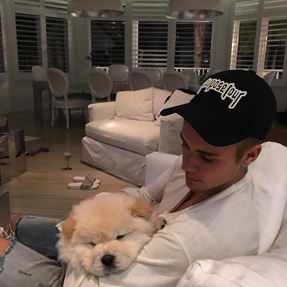 "<p>The Biebs has never been known for keeping up with his pets, and that didn't change with this little guy, ""little fluff ball"" Todd, which the singer introduced last summer. The good news is the puppy ended up with one of the Bieber's dancers, who was able to <a rel=""nofollow"" href=""https://www.gofundme.com/tods-surgery-fund"">crowdsource enough money</a> to get him an operation he needed. Oh, Bieber! (Photo: <a rel=""nofollow"" href=""https://www.instagram.com/p/BJJQ6q1h_tl/"">Instagram</a>) </p>"