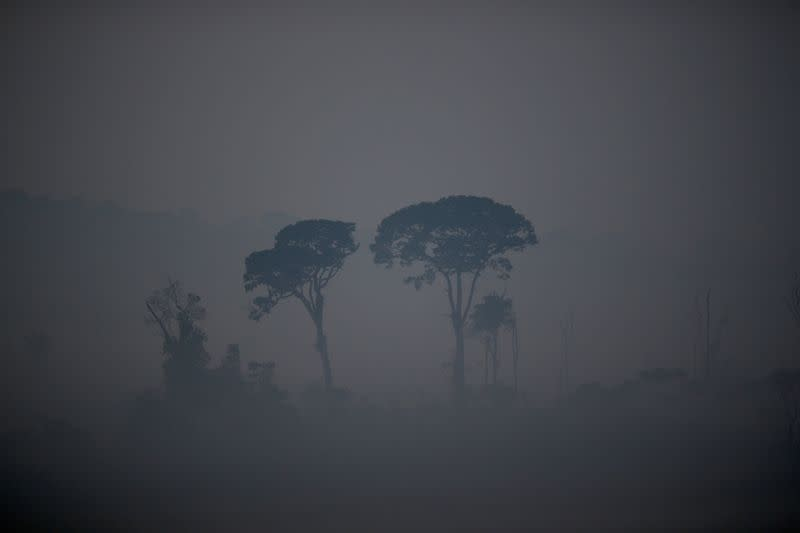 General view of a tract of the Amazon jungle as it burns near Apui