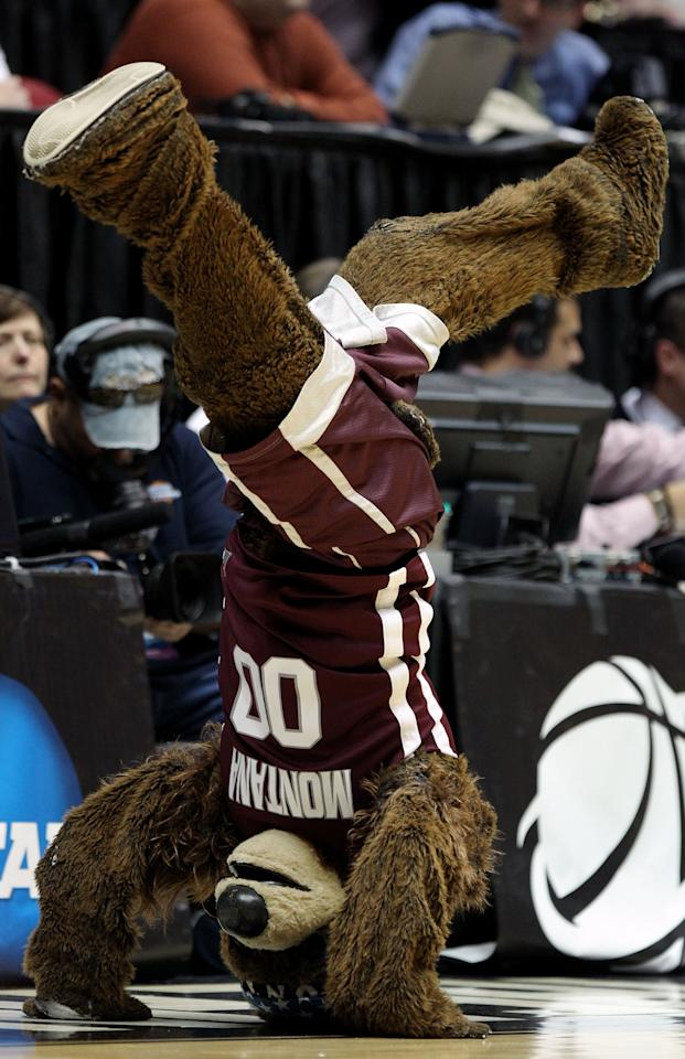 ALBUQUERQUE, NM - MARCH 15:  The Montana Grizzlies mascot 'Monte' performs during the first half of the game against the Wisconsin Badgers during the second round of the 2012 NCAA Men's Basketball Tournament at The Pit on March 15, 2012 in Albuquerque, New Mexico.  (Photo by Christian Petersen/Getty Images)