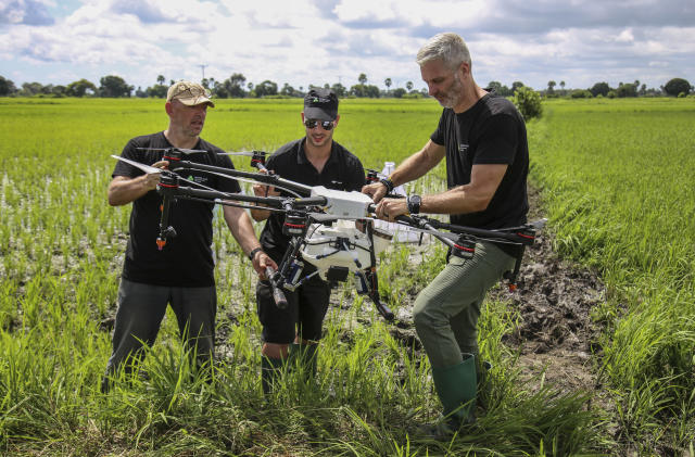 In this photo taken Wednesday, Oct. 30, 2019, Dr. Bart Knols, medical entomologist from the Dutch Malaria Foundation and lead researcher of the Anti-Malaria Drones program, left, Eduardo Rodriguez, of drone manufacturer DJI, center, and Guido Welter, a consultant from the program, prepare a drone to spray the breeding grounds of malaria-carrying mosquitoes, at Cheju paddy farms in the southern Cheju region of the island of Zanzibar, Tanzania. Drones spraying a silicone-based liquid that spreads across the large expanses of stagnant water where malaria-carrying mosquitoes lay their eggs, are being tested to help fight the disease on the island of Zanzibar, off the coast of Tanzania. (AP Photo/Haroub Hussein)