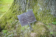 A plaque at the base of a tree planted by Prince Philip in 1958 at Britannia Royal Naval College in Dartmouth, Devon, where the he first met the Queen whilst training as a young naval cadet, England, Monday, April 12, 2021. Britain's Prince Philip, the irascible and tough-minded husband of Queen Elizabeth II who spent more than seven decades supporting his wife in a role that mostly defined his life, died on Friday. (Ben Birchall/PA via AP)