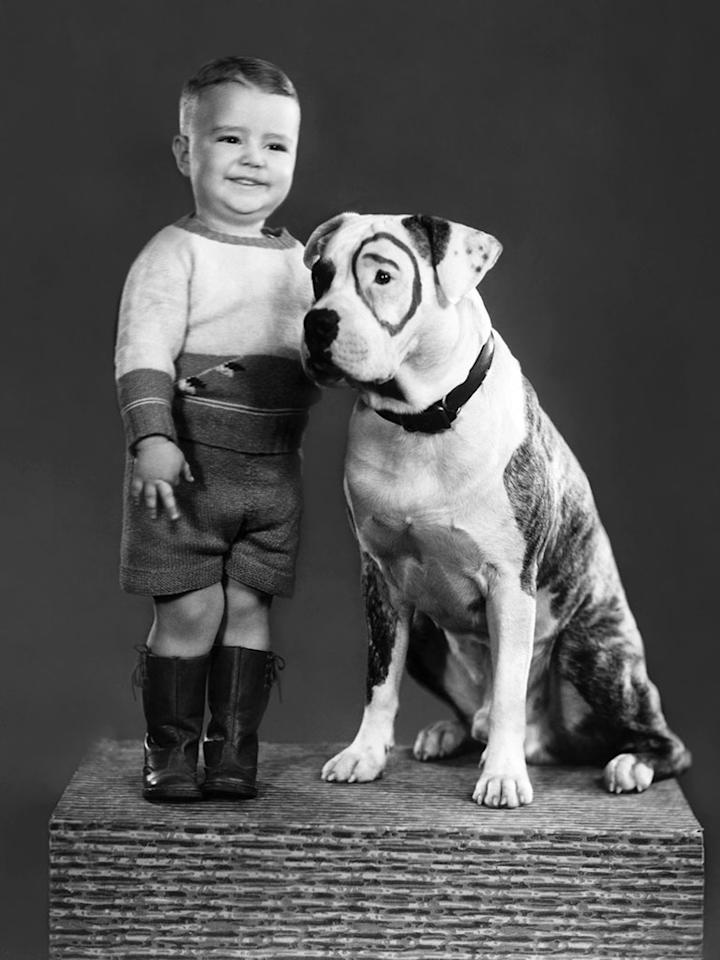 George ''Spanky'' McFarland, Pete the Pup, (ca. 1933)