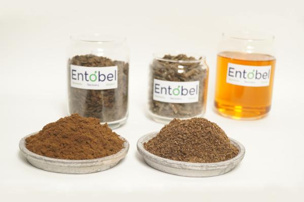 Products of Entobel, a black soldier fly farm company based in Singapore and operating in Vietnam. Products include insect protein, insect oil and fertiliser. (Photo: Entobel)