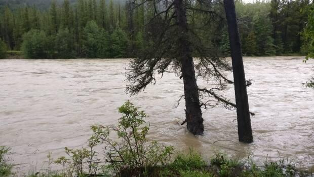 The Taseko River, which is part of the Chilcotin River flood watch, is shown swollen with rainwater on July 7, 2019.  (Kai Nagata - image credit)