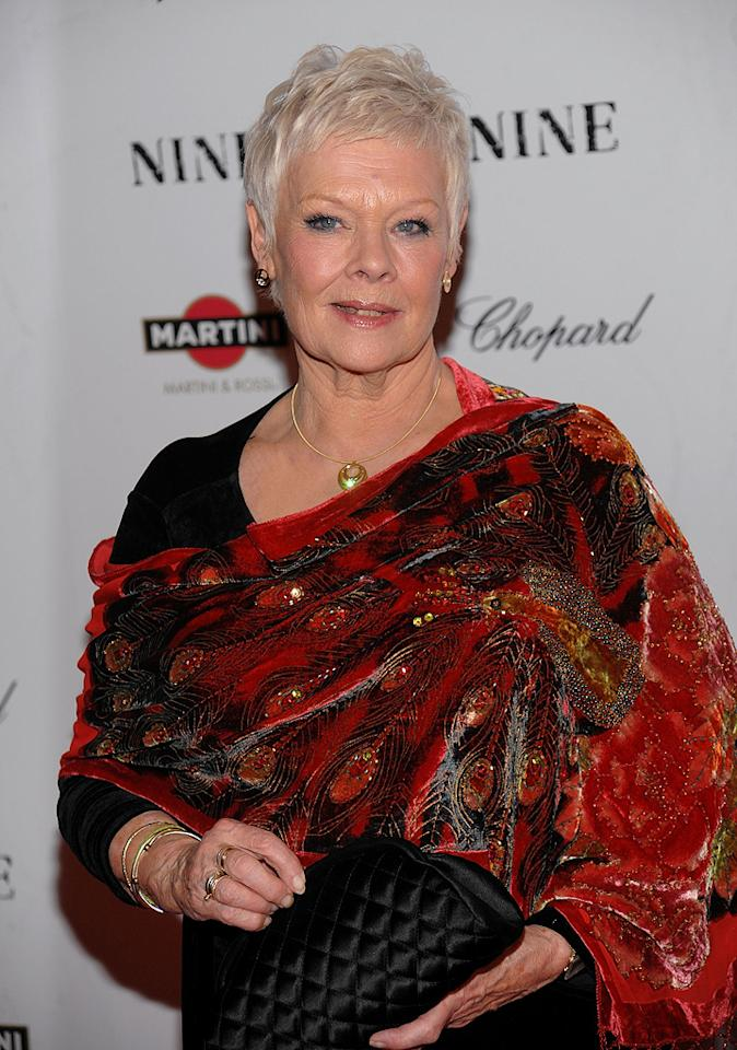 """<a href=""""http://movies.yahoo.com/movie/contributor/1800011678"""">Judi Dench</a> at the New York City screening of <a href=""""http://movies.yahoo.com/movie/1810053986/info"""">Nine</a> - 12/15/2009"""