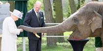 <p>Her majesty and Prince Philip feed Donna the elephant bananas at a zoo in Dunstable, United Kingdom. </p>