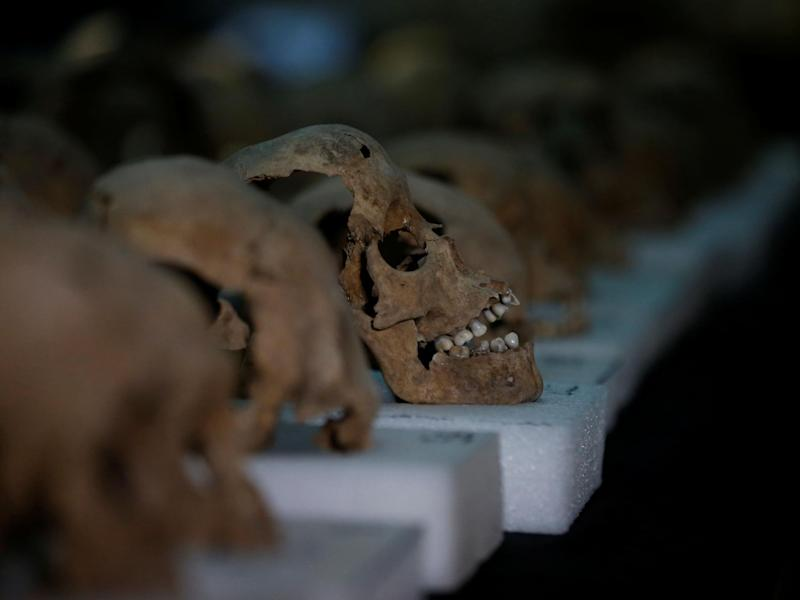Scientists analysed DNA extracted from the teeth of skeletons in a cemetery in Mexico: Henry Romero/Reuters