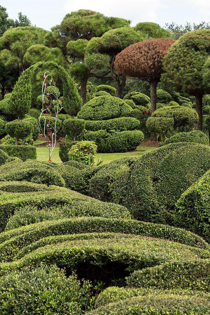 """<p>Over in the town of Bishopville is a fantastic topiary garden that's a living work of art. But you might be surprised to find out that <a href=""""http://www.pearlfryar.com/index.php?option=com_content&view=article&id=1&Itemid=23+"""" rel=""""nofollow noopener"""" target=""""_blank"""" data-ylk=""""slk:Pearl Fryar"""" class=""""link rapid-noclick-resp"""">Pearl Fryar</a>, the creator of the magnificent Pearl Fryar Topiary Garden, is a self-taught talent. And, that many of the plants within the garden were rescued from compost piles at local nurseries. It's a touching sight to behold, especially when you consider <a href=""""http://www.npr.org/templates/story/story.php?storyId=114058780+"""" rel=""""nofollow noopener"""" target=""""_blank"""" data-ylk=""""slk:Fryar's original goal"""" class=""""link rapid-noclick-resp"""">Fryar's original goal</a>: To prove he could win the town's yard of the month award. </p>"""
