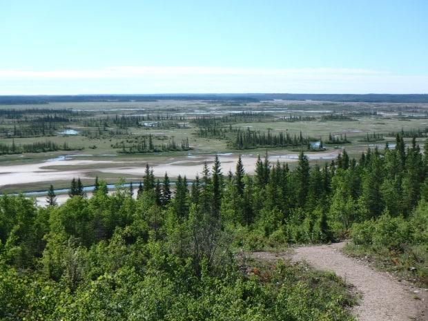 Wood Buffalo National Park is pictured in 2018. Members of the Athabasca Chipewyan First Nation were removed from the land over the last 100 years. (Lennard Plantz/CBC - image credit)