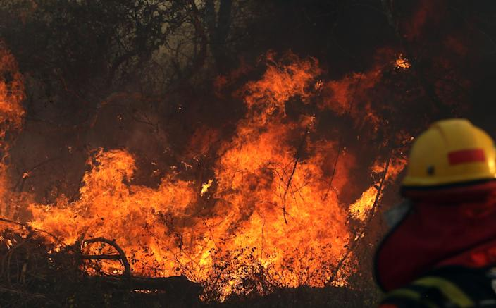 A firefighter at a wildfire near Robore, Santa Cruz region, Bolivia, on Aug. 22. (Photo: Stringer/AFPTV/AFP/Getty Images)