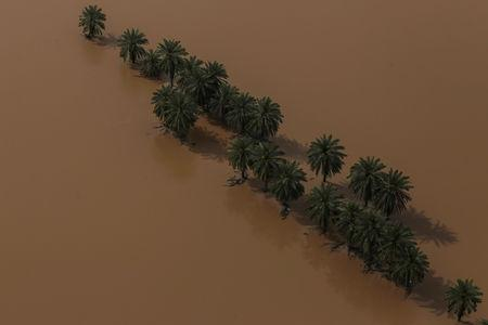 An aerial view showing trees in the middle of flood in Khuzestan province, Iran, April 5, 2019. Picture taken April 5, 2019. Mehdi Pedramkhoo/Tasnim News Agency/via REUTERS