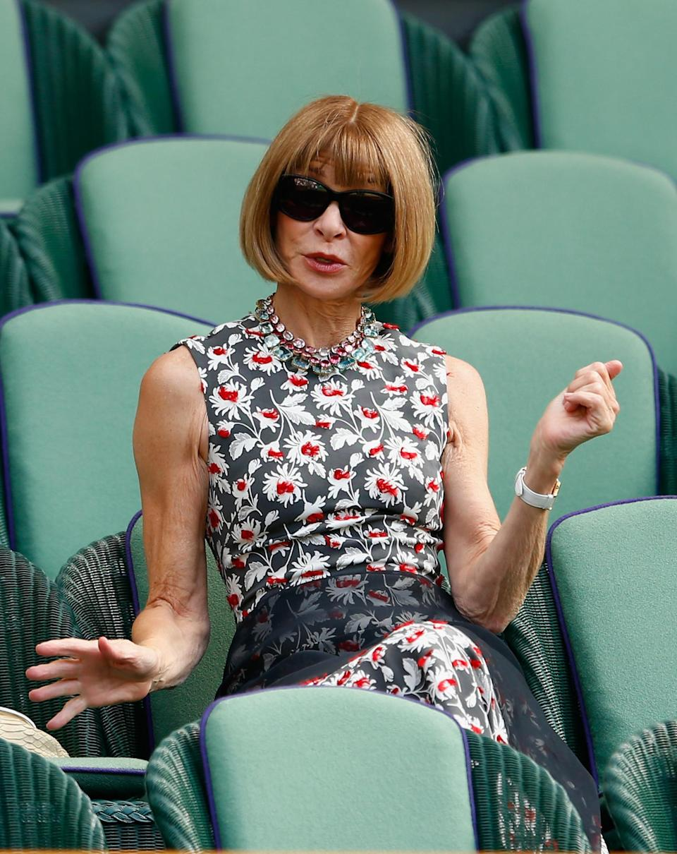 Anna Wintour (Getty Images)