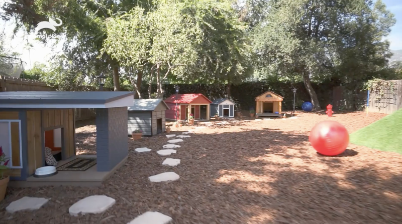 Animal Cribs Is Like Mtv Cribs For Pets And The Doghouses Are