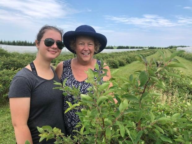 Lynn Townshend gets help from her granddaughter in the fields at Rollo Bay Haskap. (Nancy Russell/CBC - image credit)