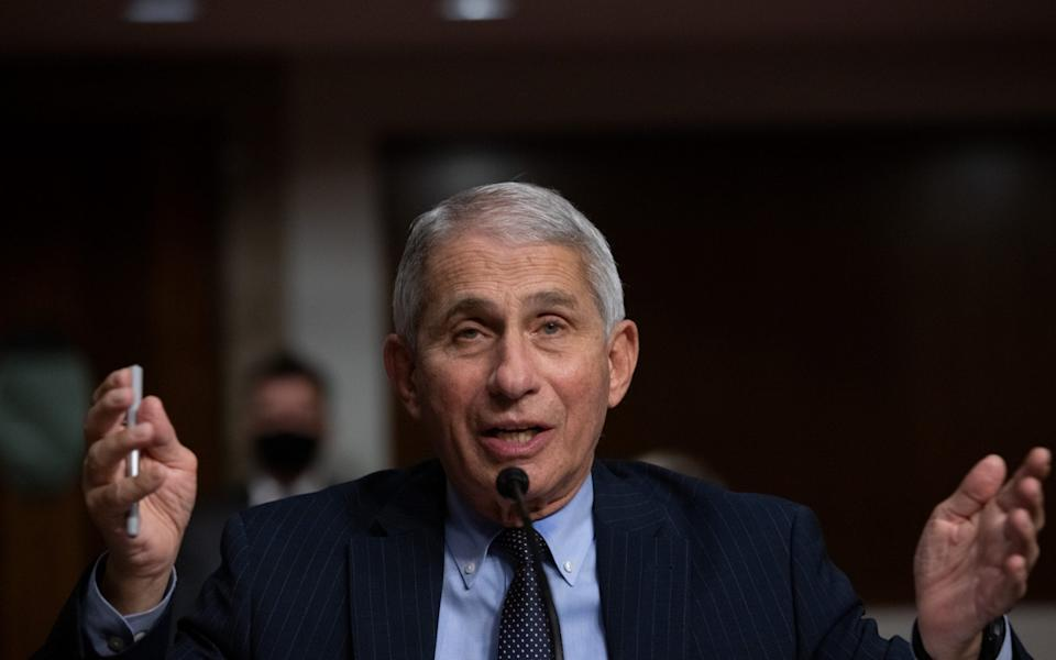 Anthony Fauci -  Graeme Jennings / Washington Examiner