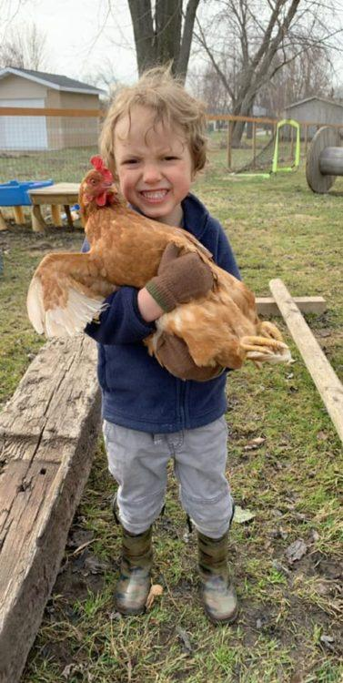Little boy holding rooster
