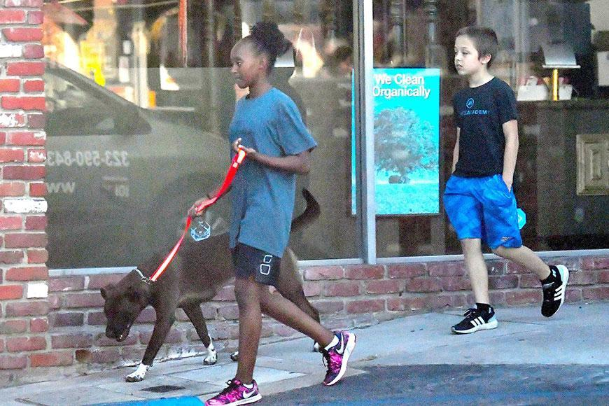 Angelina Jolie's kids Zahara and Knox Jolie-Pitt have been spotted out and about taking their pet dog for walk.