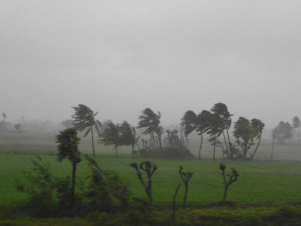 Cyclone Thane rages through Salem, Tamil Nadu after leaving a trail of destruction in Pondicherry between Cuddalore. Photo by Yahoo! reader Sharavanan Sivakumar