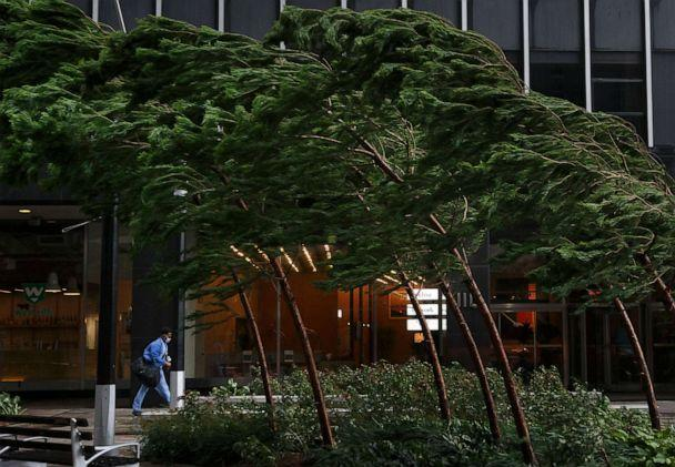 PHOTO: A man walks past trees bending in the wind in lower Manhattan as Tropical Storm Isaias passes through New York City, Aug. 4, 2020. (Justin Lane/EPA via Shutterstock)