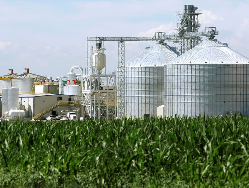 FILE PHOTO: FILE PHOTO: The Front Range Energy ethanol plant with its giant corn silos next to a cor..