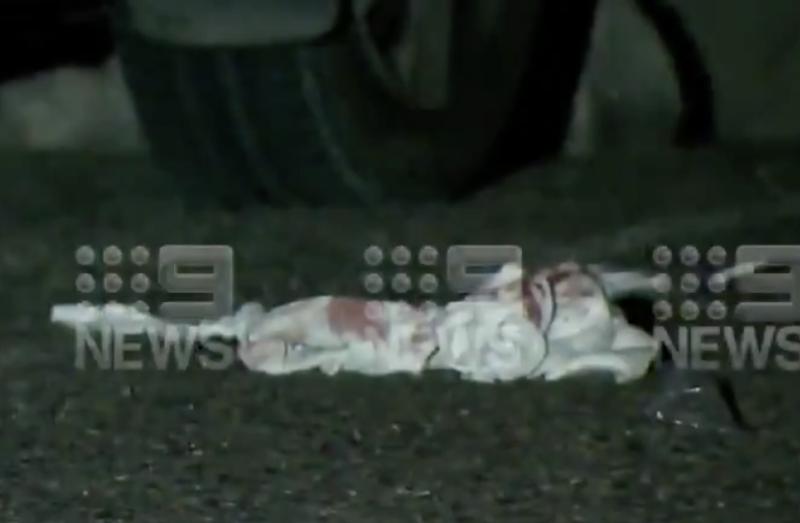 What appears to a bloodied rag lying on the ground in Zillmere.