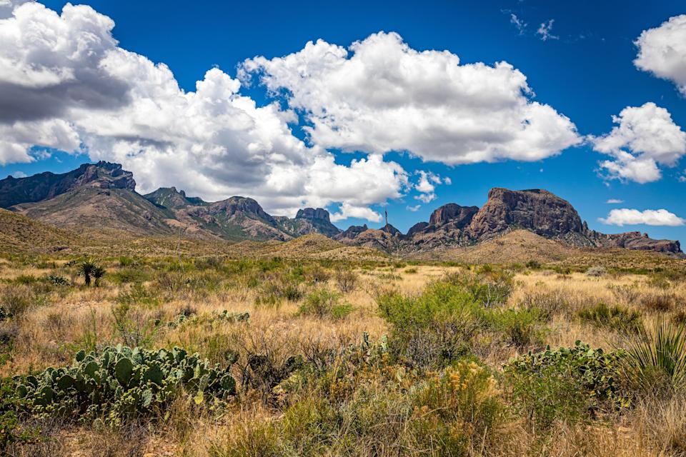 """<p><strong>Best camping in Texas:</strong> Chisos Basin Campground, Big Bend National Park</p> <p>Perched atop an uncharacteristically green island in the sky, the Chisos Basin does not feel like <a href=""""https://www.cntraveler.com/gallery/weekend-getaways-texas?mbid=synd_yahoo_rss"""" rel=""""nofollow noopener"""" target=""""_blank"""" data-ylk=""""slk:Texas"""" class=""""link rapid-noclick-resp"""">Texas</a>. Mountain lions and black bears roam free among the jagged, rust-colored cliffs, and the arid Chihuahuan Desert sprawls out thousands of feet below. If you're looking to hike, the campground's 69 sites are the perfect jumping off point for the park's best trails.</p>"""