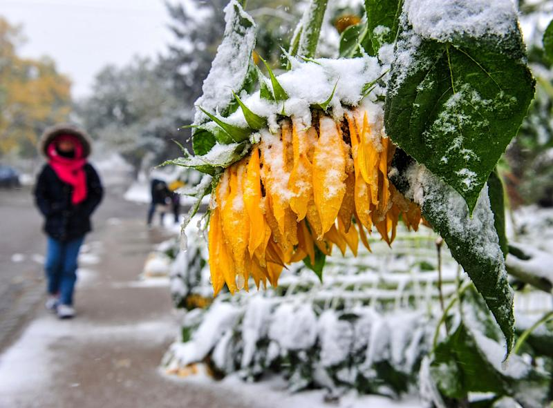 A snowstorm will wallop central USA this week, plunging temps as much as 60 degrees in one day